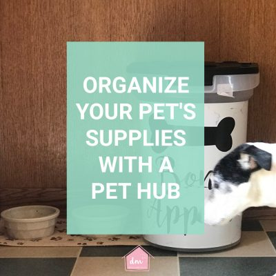 Setting up a Pet Hub in Your Home